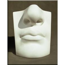 Гипсовая модель учебная Губы и нос Давида ARTONE